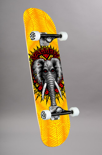 Skate Complet Powell Peralta Vallely...