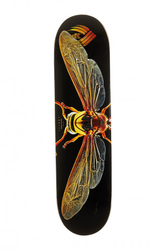 Erable + résine Epoxy Powell Peralta Flight Biss...