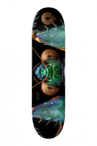 Plateaux Powell Peralta Biss Bark...