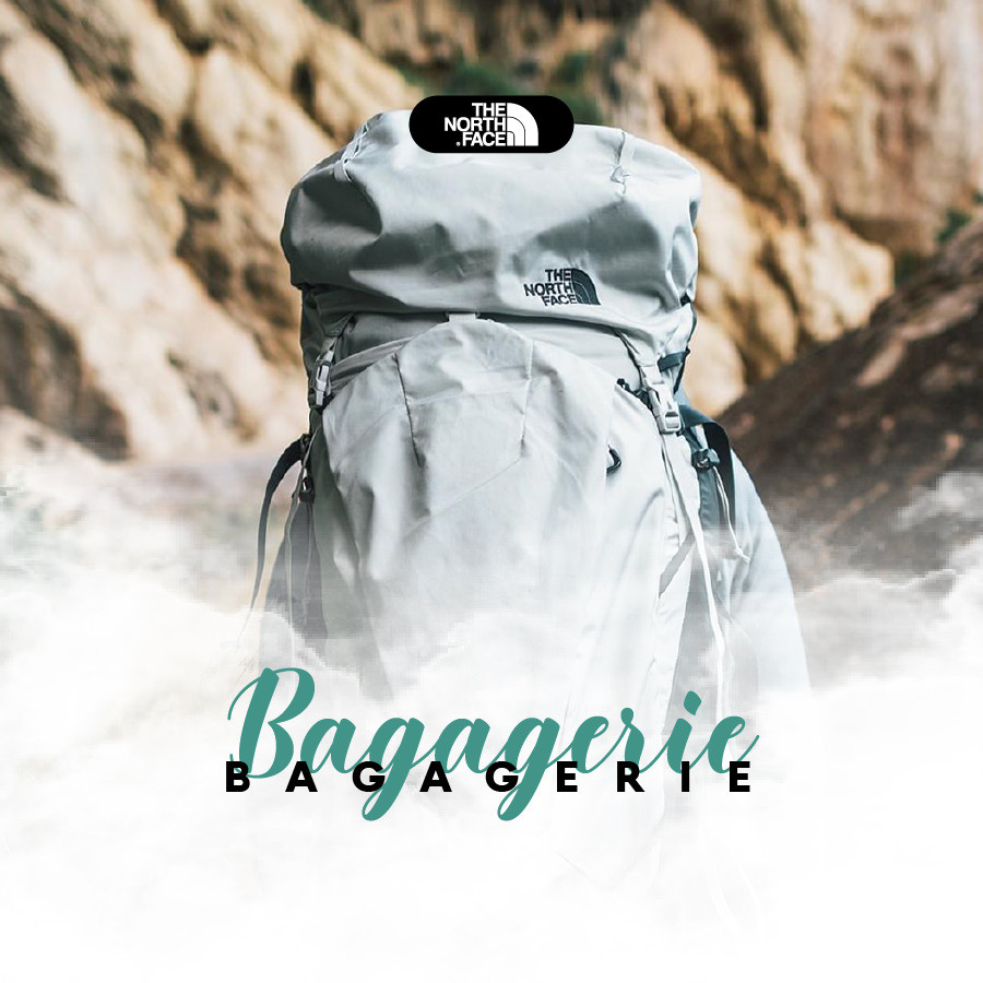 BAGAGERIE THE NORTH FACE SAC A DOS